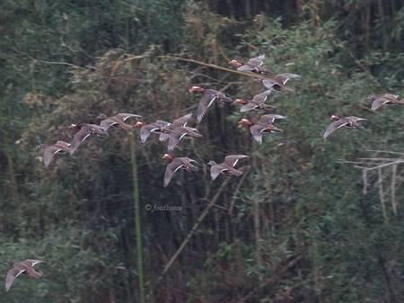 2012-12-23_315.jpg
