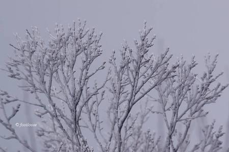 2013-03-02_212.jpg