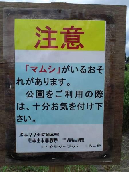2013-06-15_590x.jpg